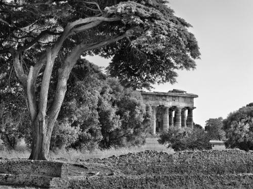 Sito archeologico. Paestum, Italia 2010