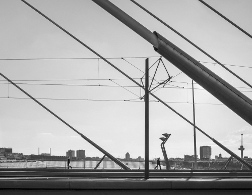 Erasmusbrug. Rotterdam, Olanda 2017