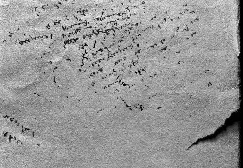 Biologie de l'acte d'écrire · 2002